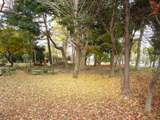 公園02.jpg